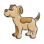 Tipps für den Namen Ihres Hundes