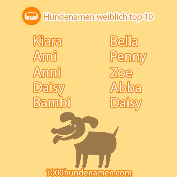 hundenamen weiblich top 10