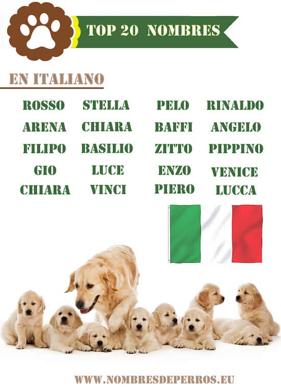 Italienische hundenamen